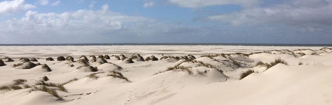 Segeln Nordfriesische Inseln