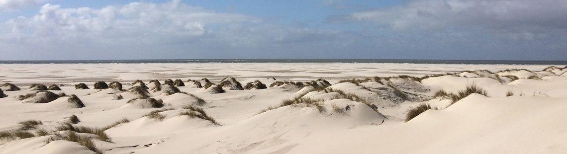Segeln Nordfrisische Inseln